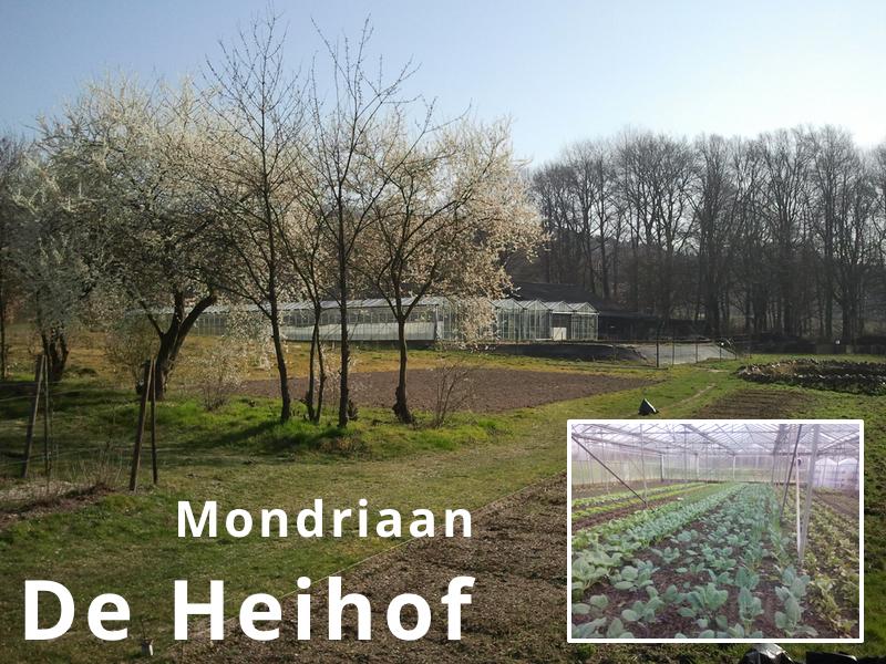 De Heihof